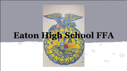 FFA students conclude a successful year
