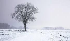 Winter Break at Eaton High Takes Full Force