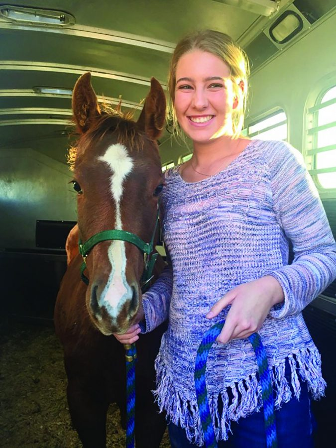 Lauren+Weaber+standing+in+the+trailer+with+her+new+filly%2C+Ivy.