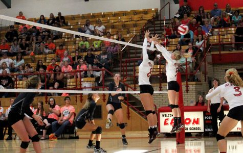 Volleyball continues to roll through the season