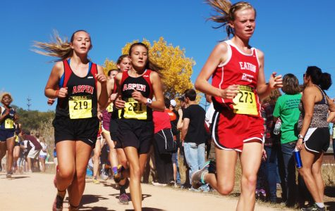 Cross Country Makes Big Improvement at State