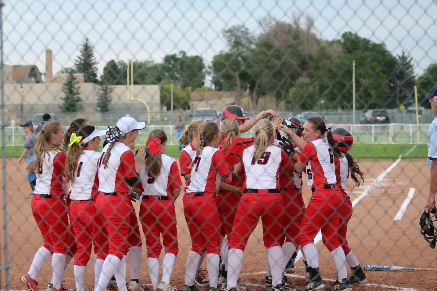 Reds lose in the semifinals at state tournament