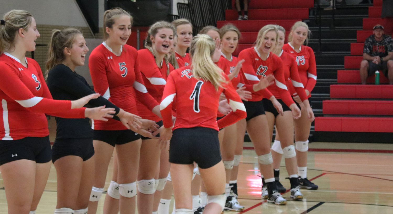 Volleyball prepares for regionals