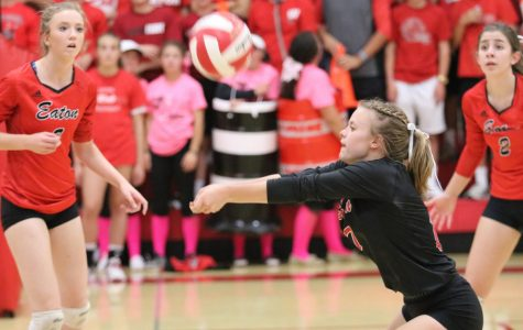 Reds volleyball dominates 3A