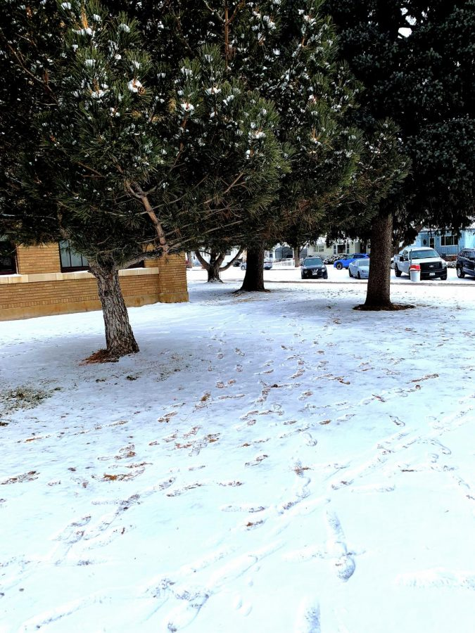 Snow day factors and concerns