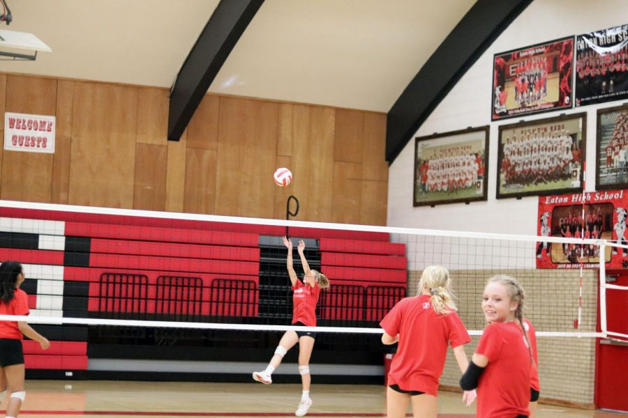 Rylee Martin (23) sets the ball up for an attack.