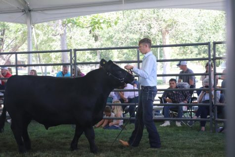 EHS students' hard work pays off at Weld County Fair