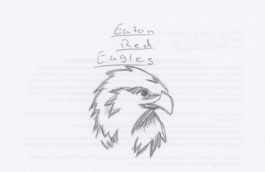 Eagle+Concept