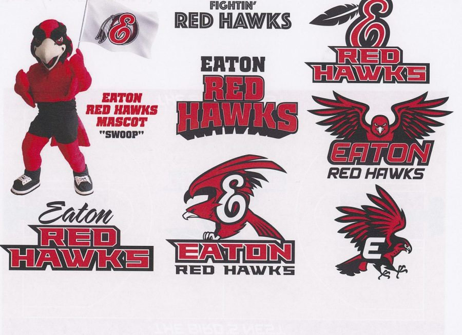 Red+Hawks+Concept