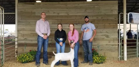 Students learn life lessons over summer through 4-H and FFA